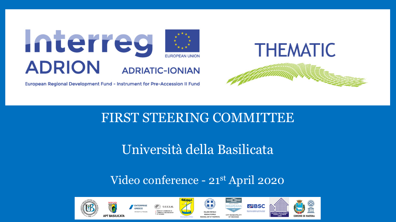 THEMATIC First steering Committee